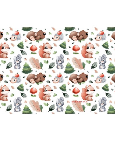 Bawełna Zwierzaki Zwierzaczki Wiewiórki Misie Jeżyki Na Białym 0215